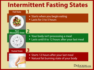 Intermittent-Fasting-States
