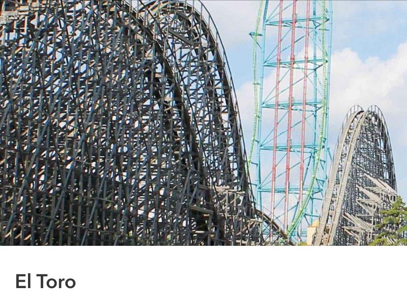 Six Flags Great Adventure, El toro