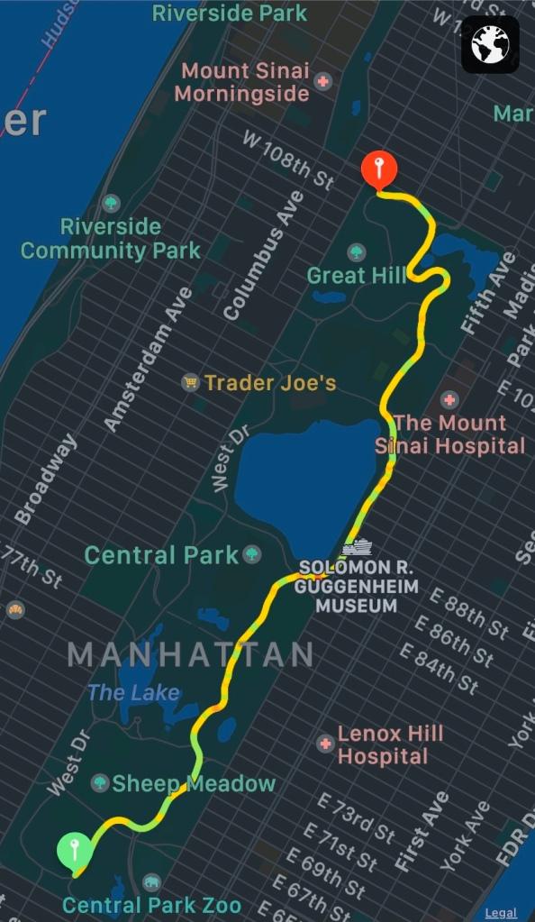 Running 5K in Central Park, New York, NY.